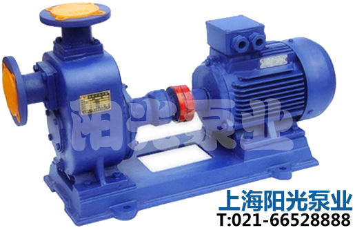 卧式管道离心泵及电动机安装程序